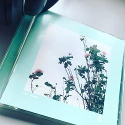 くるり ばらの花 (1).jpg
