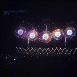 テレビで赤川花火。2019 (1).jpg
