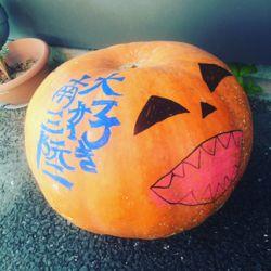 南三陸町 かぼちゃ。.jpg