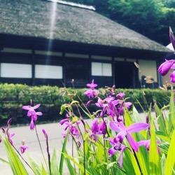 材木岩公園の家 (1).jpg