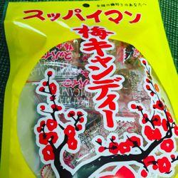 梅キャンディー。かりゆし.jpg