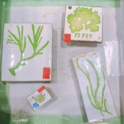 海藻ステンシル (1).jpg