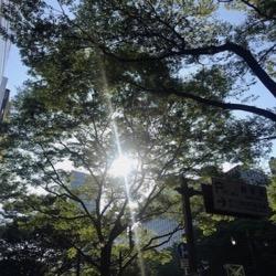 真夏!7月2日。 (1).jpg