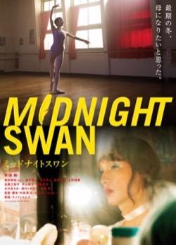 10−1midnight swan.jpg