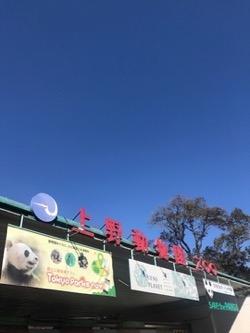 20180206上野動物園。.jpg