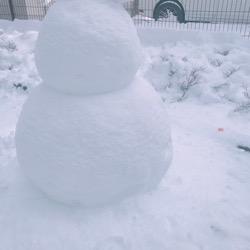 20180212雪だるま。 (1).jpg