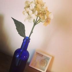 7月4日 紫陽花をかざってみる。 (1).jpg