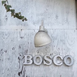 BOSCO (1).jpg
