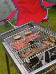 bbq%20and%20chair.jpg