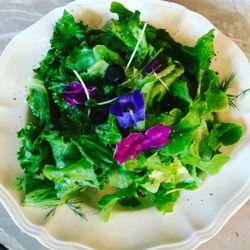 cyan グリーンサラダかとおもいきいや.jpg
