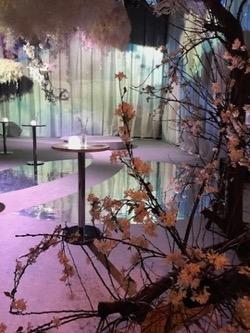flowers 桜.jpg