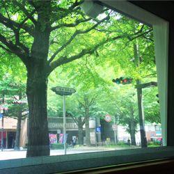 green 2016愛宕上杉。.jpg