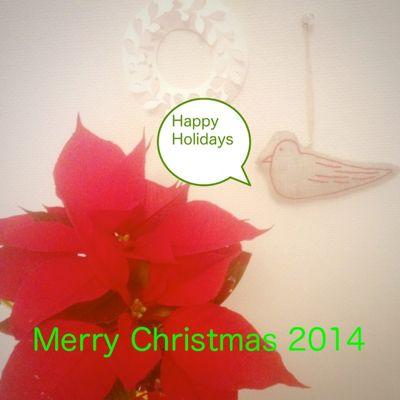 merry%20christmas2014.jpg